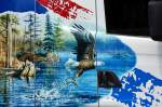 Sattelzuge/285529/das-malerische-motiv-auf-der-seitentuer Das malerische Motiv auf der Seitentür des SCANIA R500 der Fa. ROLAND HELM wirkt sehr US-amerikanisch, ein Seeadler beim Fischfang, ein schönes Motiv auf weißem Untergrund, 06.08.13 Berlin-Pankow.